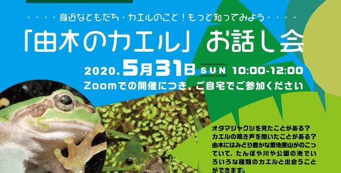 由木のカエルお話し会 Zoomで開催しました!2020.5.31