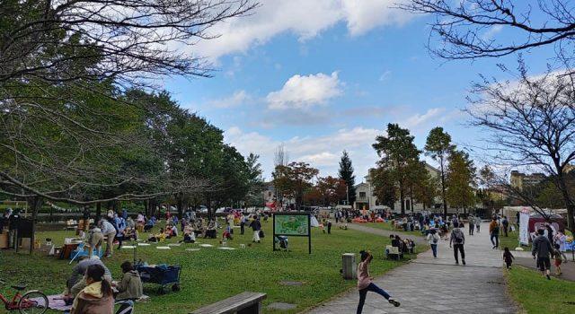 公園で楽しむ読書の秋