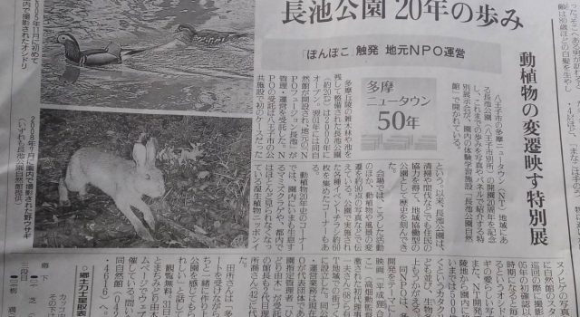 長池公園開園20周年記念特別展示会が読売新聞に掲載されました